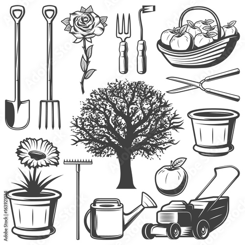 Vintage Garden Elements Collection - 163921024