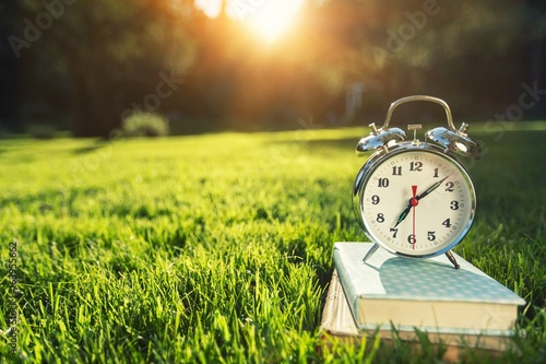 Clock and book on grass. - 163955662
