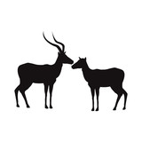 silhouette pair of a standing impala africa mammal wild - 163980214