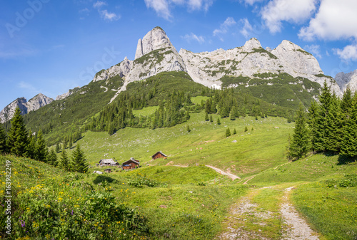 Alpine mountain landscape in summer with green pastures