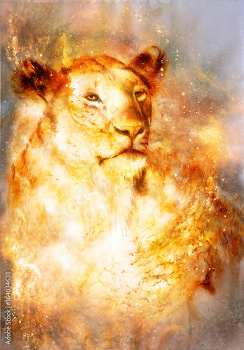 beautiful painting of lioness in floating space energy and light