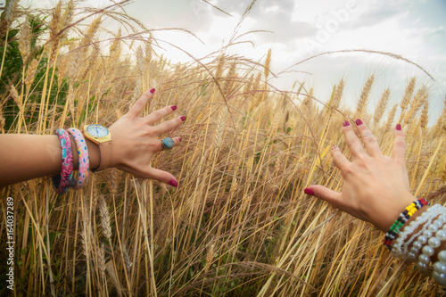 Plakát Hands from the personal point of view in the wheat-field.
