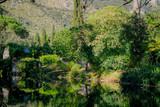 La bellezza della natura: alberi, piante e acqua nel giardino di ninfa