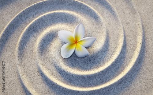 Fotobehang Plumeria Frangipaniblüte im Sand