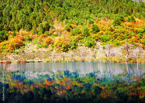 Colorful fall woods reflected in lake. Fantastic landscape