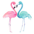 Watercolor two flamingos on white background. Hand drawn illustration