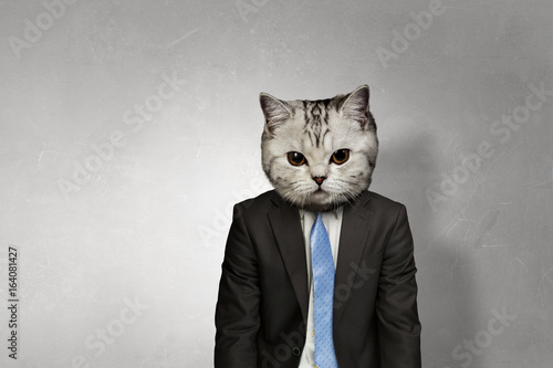 Cat in business suit. Mixed media Poster