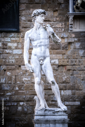 The David of Michelangelo in the Piazza della Signoria Florence Poster
