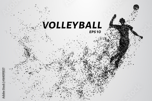 Fototapeta Volleyball, particle divergent composition, vector illustration. Silhouette of a volleyball from particles