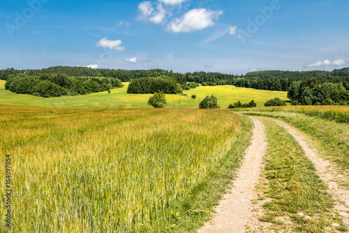 Papiers peints Miel Road through fields - amazing summer countryside