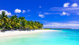 Gorgeous tropical white sandy beach with turquoise sea. Mauritius island - 164101609