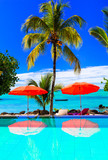 Tropical vacation - bar with turquoise swim pool and sea view. Mauritius island - 164103064