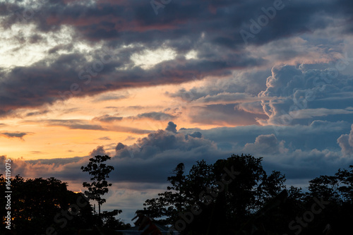 Tropical sunset and rainforest silhouette