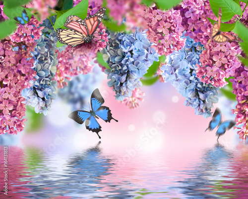 Amazing spring lilac on a flower postcard. Natural background with butterflies.
