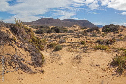 Foto op Canvas Canarische Eilanden Picturesque desert landscape of Graciosa volcanic island with sparse vegetation on sandy dunes, Lanzarote, Canary Islands, Spain