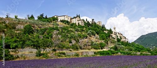 Fotobehang Lavendel Paysage de Provence