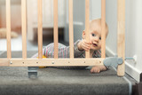 child playing behind safety gates in front of stairs at home - 164169649