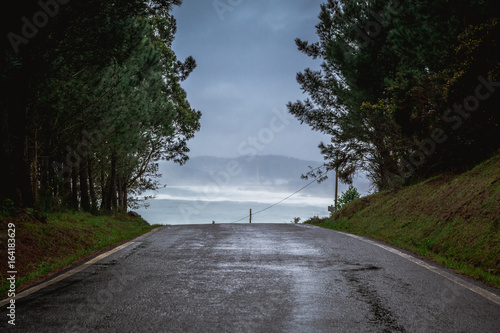Scenics View of Country Road Amidst Forest Trees Against Coastline and Ocean Poster