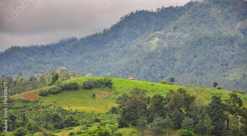 Pai mountain in rainy season