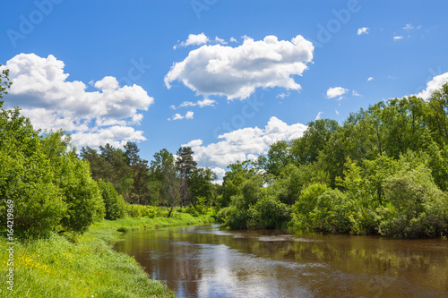 rural summer landscape with forest, river, blue sky and white clouds.