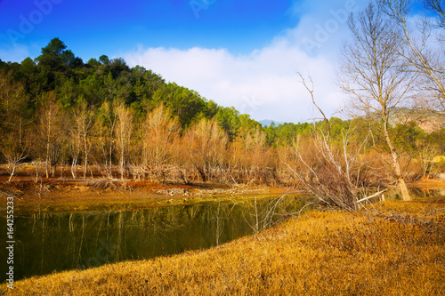 Mountains river with forest riverside in autumn