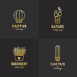 Постер, плакат: Succulents and cacti gold vector set Part four