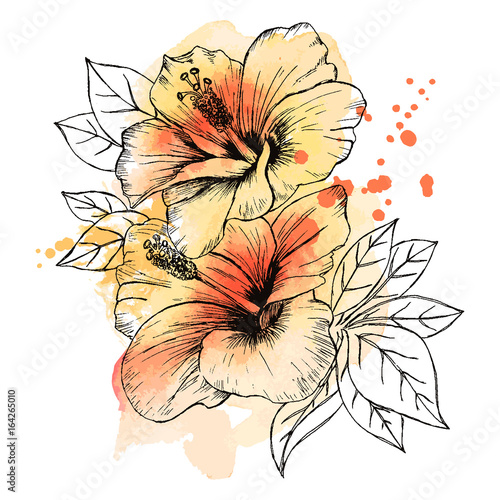 A Bouquet Of Tropical Hibiscus Flowers Hand Drawn Sketch Texture