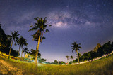 Milkyway with coconut tree at MARDI Muadzam Shah, Malaysia. ( Visible noise due to high ISO, soft focus, shallow DOF, slight motion blur)