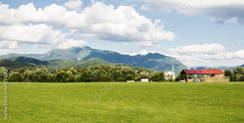Spring summer carpathian landscape with green village field