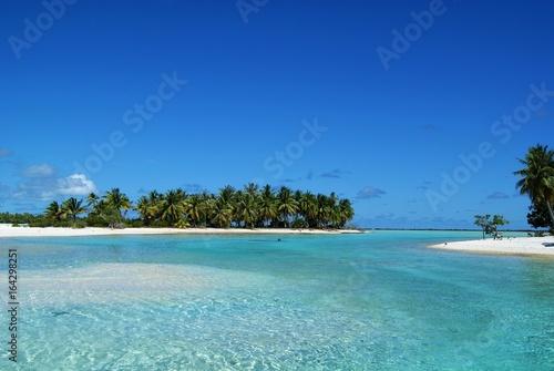 Foto op Aluminium Tropical strand Motus de l'atoll de Rangiroa (polynésie)