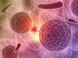 3D komórki wirusa - medycyna