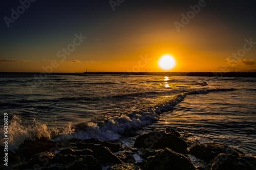 Seal Beach 8