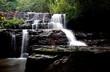 Pang Sida Waterfall - 164375034
