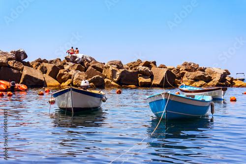 Colorful boats in Riomaggiore Poster