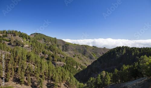 Foto op Canvas Canarische Eilanden Gran Canaria, July