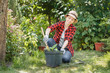woman gardener planting flowers - 164463221