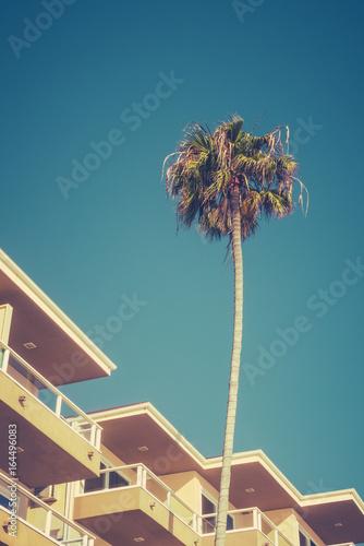 Aluminium Palm boom Retro California Hotel