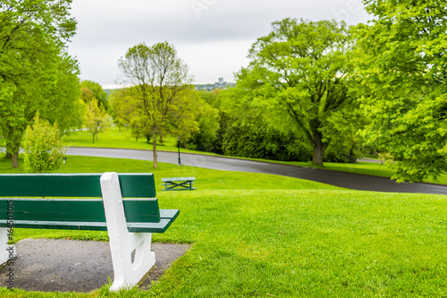 Plakat Empty bench in green plaines d'Abraham in morning during summer with road in Que