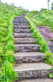 Closeup of wet stone steps looking up in green grass park during summer