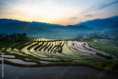 Foto op Aluminium Rijstvelden Terraced rice field in morning in water season, the time before starting grow rice in Y Ty, Lao Cai province, Vietnam
