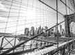 Quadro New York Brooklyn Bridge on a sunny day