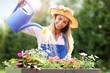 Woman watering plants outside in summer - 164546626