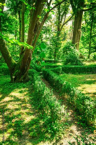 Old garden in Parma, Emilia-Romagna, Italy.