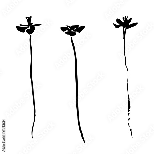 Three hand drawn black stylized flower painted by ink. Sketch vector illustration.