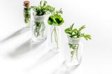 Fresh medicinal herbs in glass on white background - 164603401