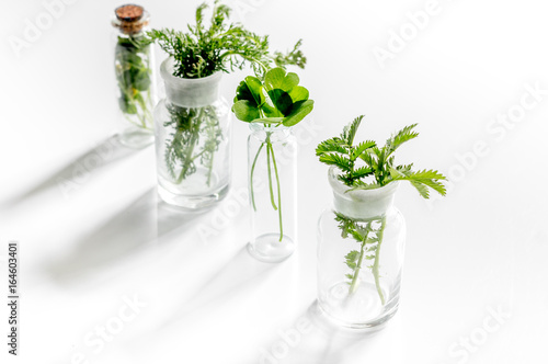 Fresh medicinal herbs in glass on white background