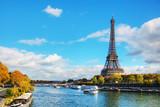 Pejzaż Paryża z Wieżą Eiffla