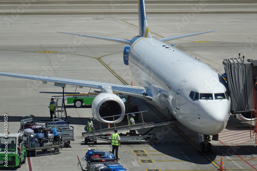 Plane at the airport, baggage unloading