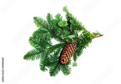 Fir branch with cone on a white background Poster