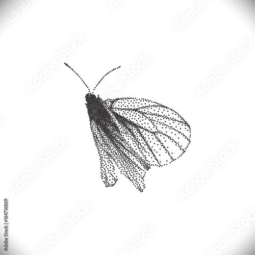 Foto op Canvas Vlinders in Grunge Aporia Crataegi Butterflies